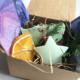 Winter Forest Vegan Soap Gift Set
